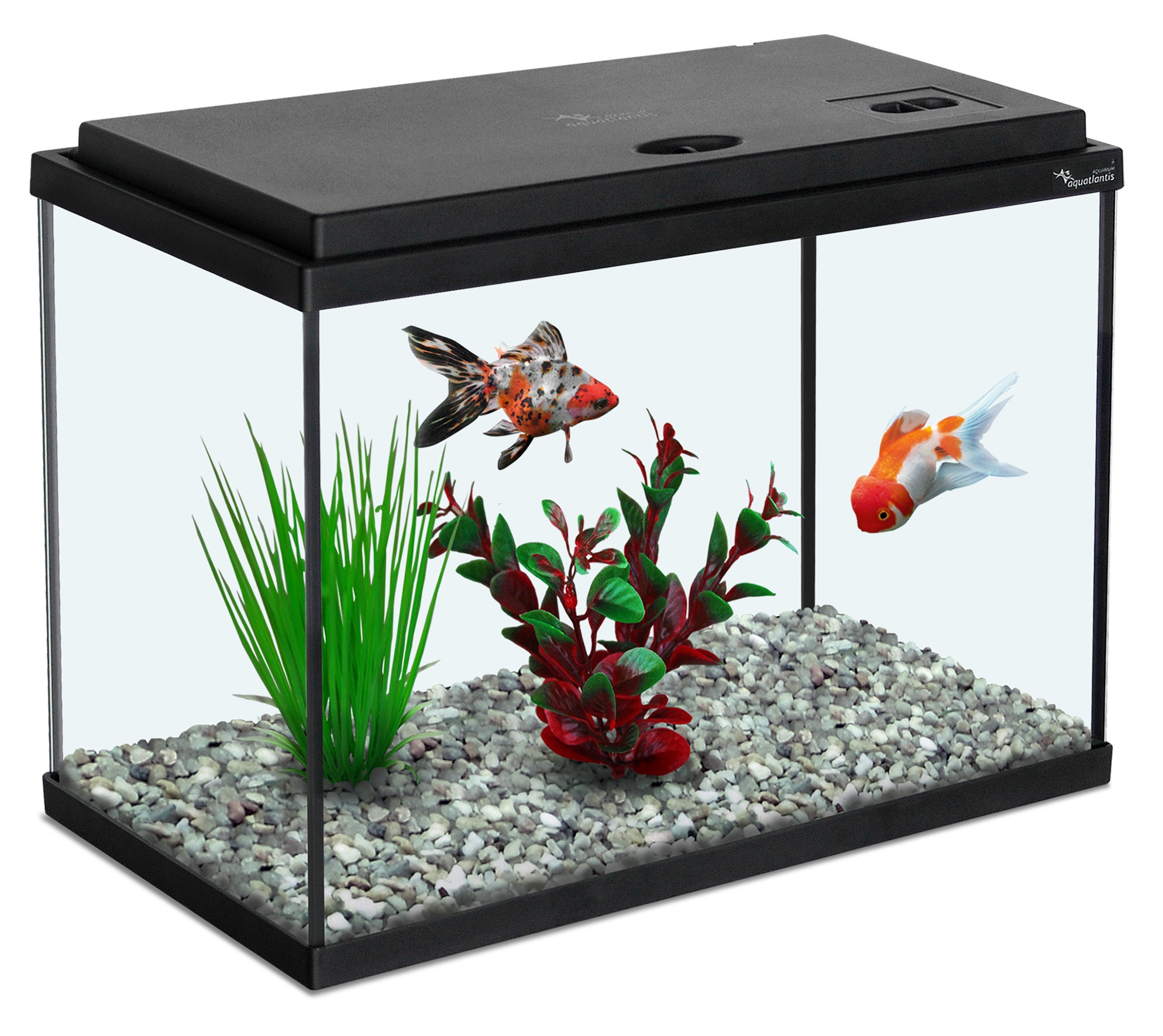 Aquarium 13.8L noir