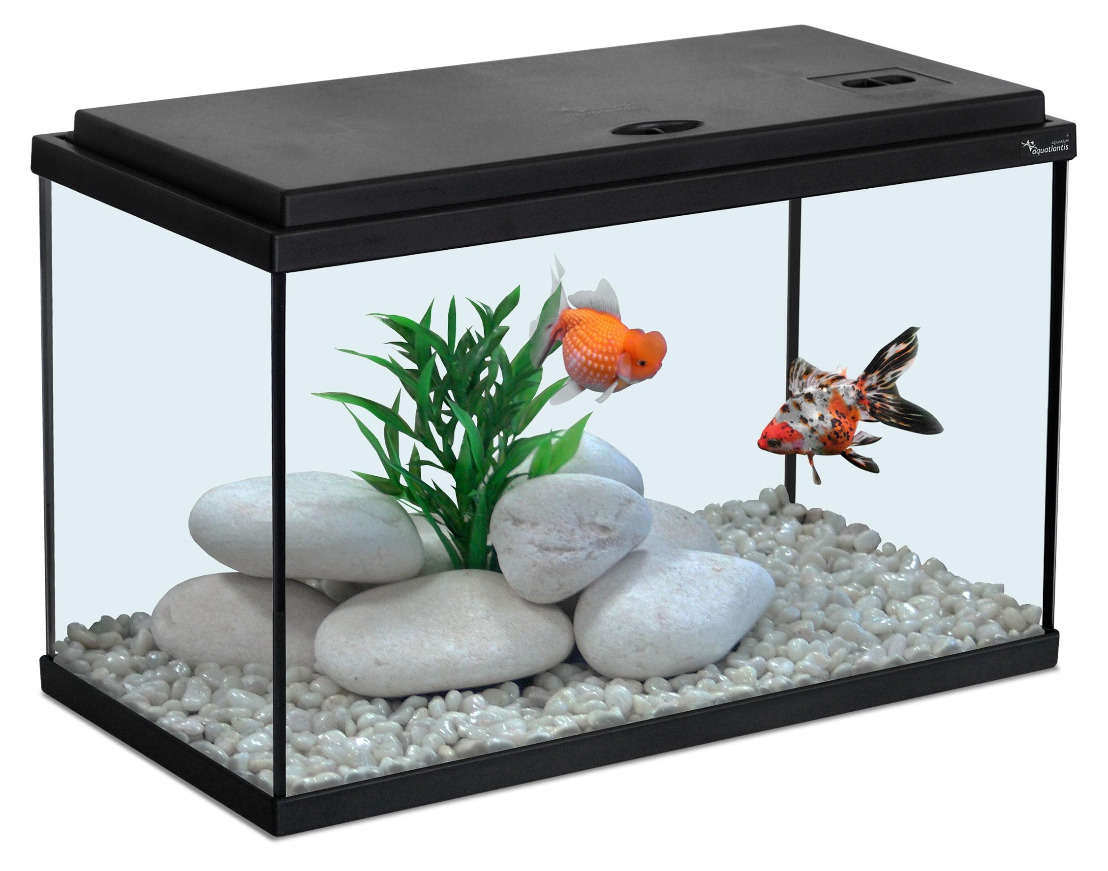 Aquarium 20L noir