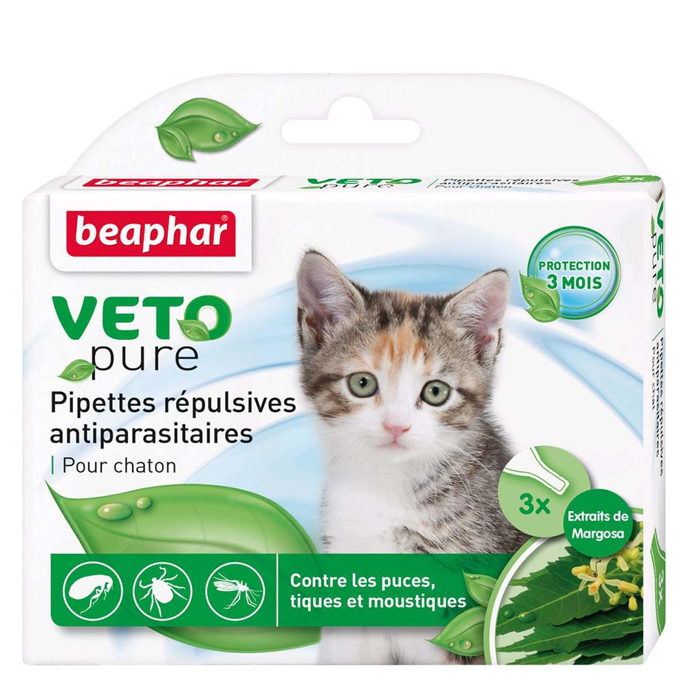 Pipettes antiparasitaires chatons Beaphar