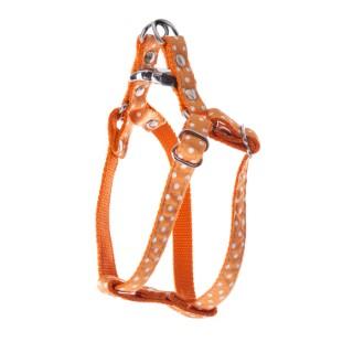 Harnais baudrier Pois pour chien coloris orange - XS 120256