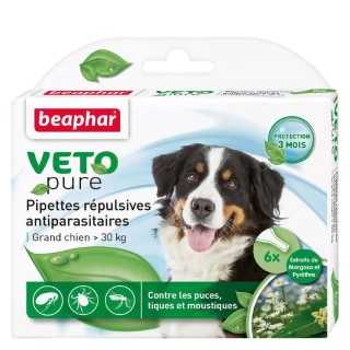 Pipettes antiparasitaires Beaphar® x6 chien 30kg  155989