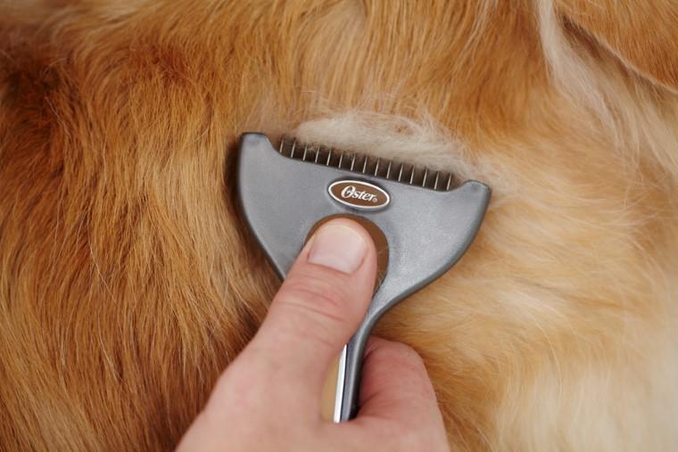 Etrille pour chien à poils courts Oster 102346
