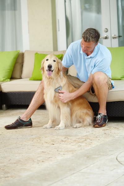 Etrille pour chien à poils moyens et longs Oster  102347