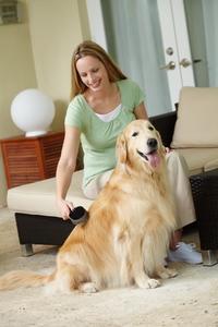 Brosse pour chien double face Oster 102348
