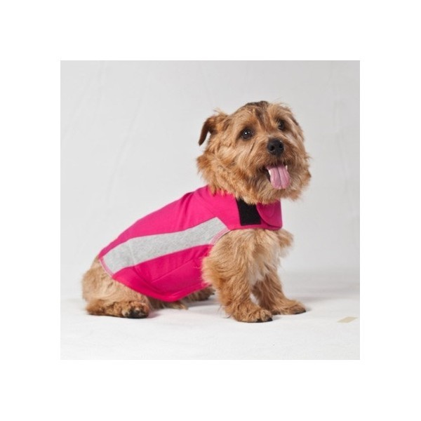 T-shirt Polo anti-stress chien Thundershirt XXS 120618