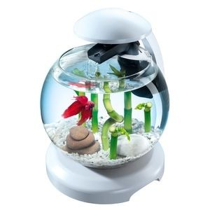 Aquarium Tetra cascade globe Blanche 129922