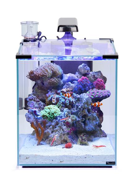 Aqua nano recif 40L