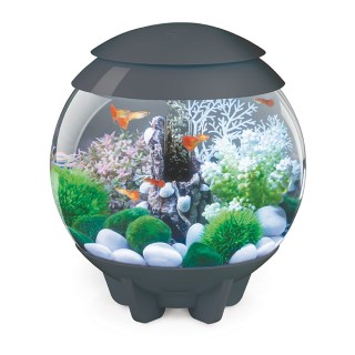 Aquarium biOrb HALO 15 L Gris LED Multi color 262315