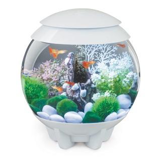 Aquarium biOrb HALO 15 L Blanc LED Multi color 262316
