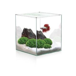 Aquarium Cube 10L 275786
