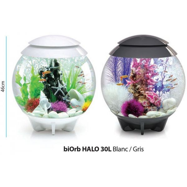 Aquarium biOrb HALO 30 L Gris LED Moonlight 235116