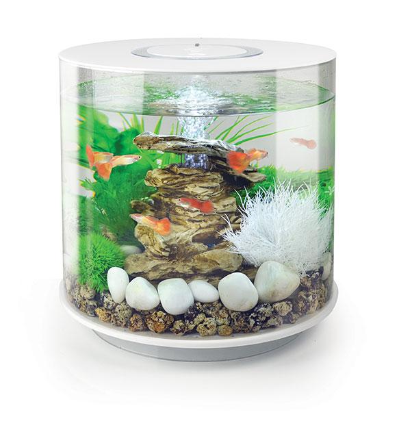 Aquarium biOrb 15L TUBE LED Blanc 262317