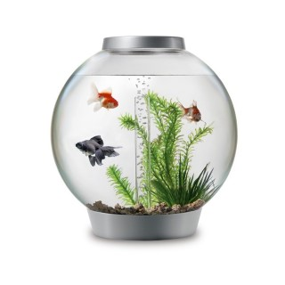 Aquarium BiOrb 30L silver LED MCR Multi couleur télécommandé 343019