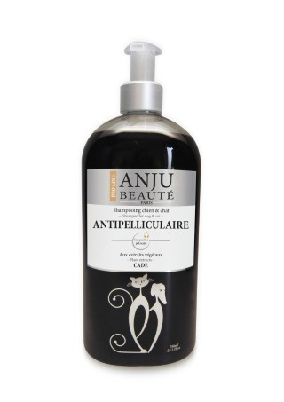 Shampoing ANJU Beauté anti-pelliculaire 750 ML 399819