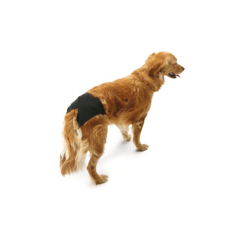 Culotte hygiénique pour chien t.5 noir Doggli Savic 31259