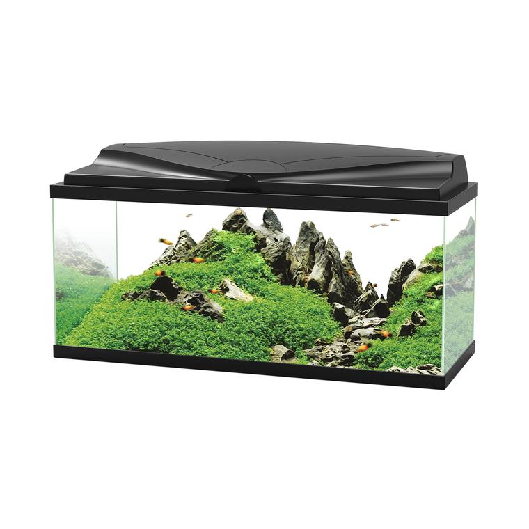 Aquarium 80 équipé avec LED 80 x 30 x 35 cm 330584
