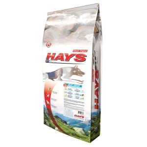 Croquettes Chien Junior - Hays Classic Original Canin Maxi Junior 15kg 371666
