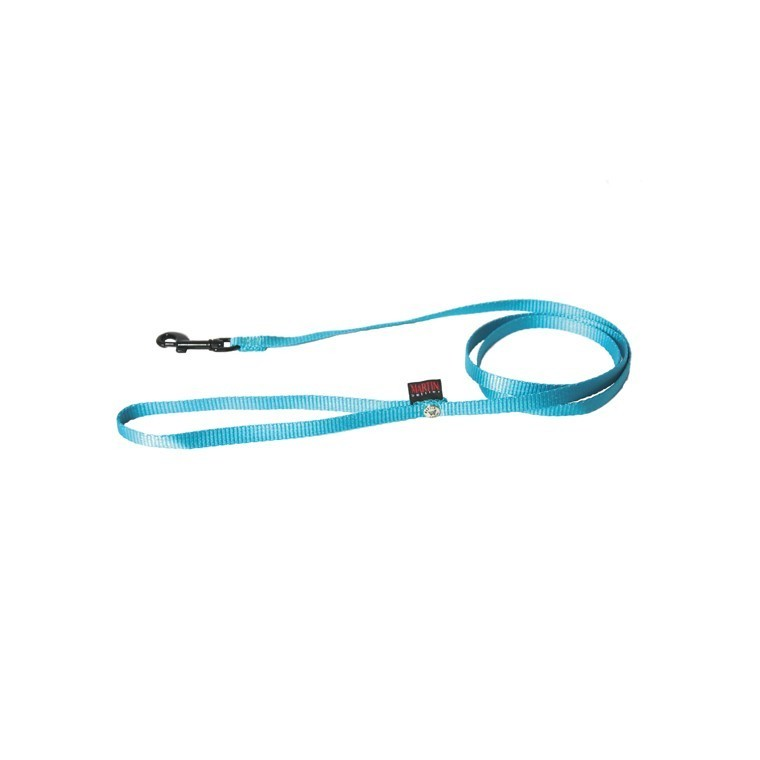 Laisse chien nylon 10 mm / 120 cm bleu 37294