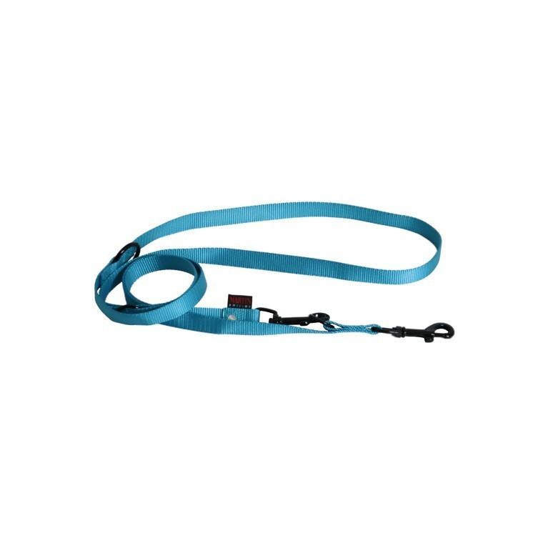 Laisse chien - 3 positions 20 mm / 200 cm bleu 37300