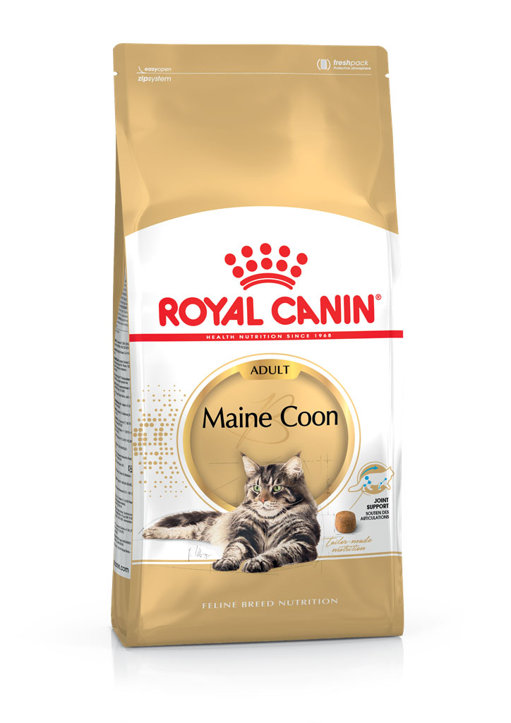 Croquette chat Royal Canin Maine Coon 4kg 393399