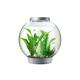 Aquarium Baby BiOrb silver éclairage LED multicouleur télécommandé 441447