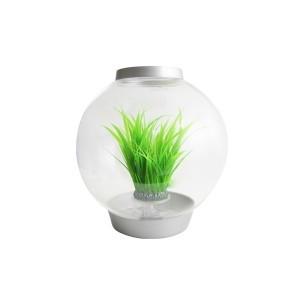 Décoration aquarium moyen anneau d'herbe biOrb 441509