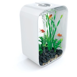 Décoration aquarium plantes vertes M x2 biOrb 441491