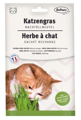 Recharge herbe à chat  Bubimex 100g 634522