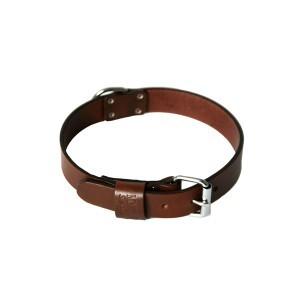 Collier chien droit 25mm / 50cm marron 626556