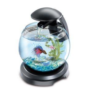 Aquarium Tetra cascade globe Noir 62710