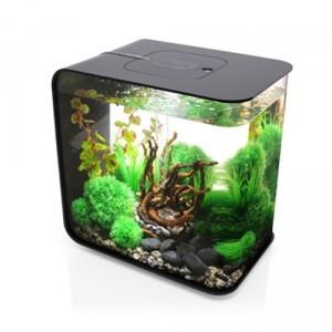 Aquarium biOrb 30L FLOW Noir 62714