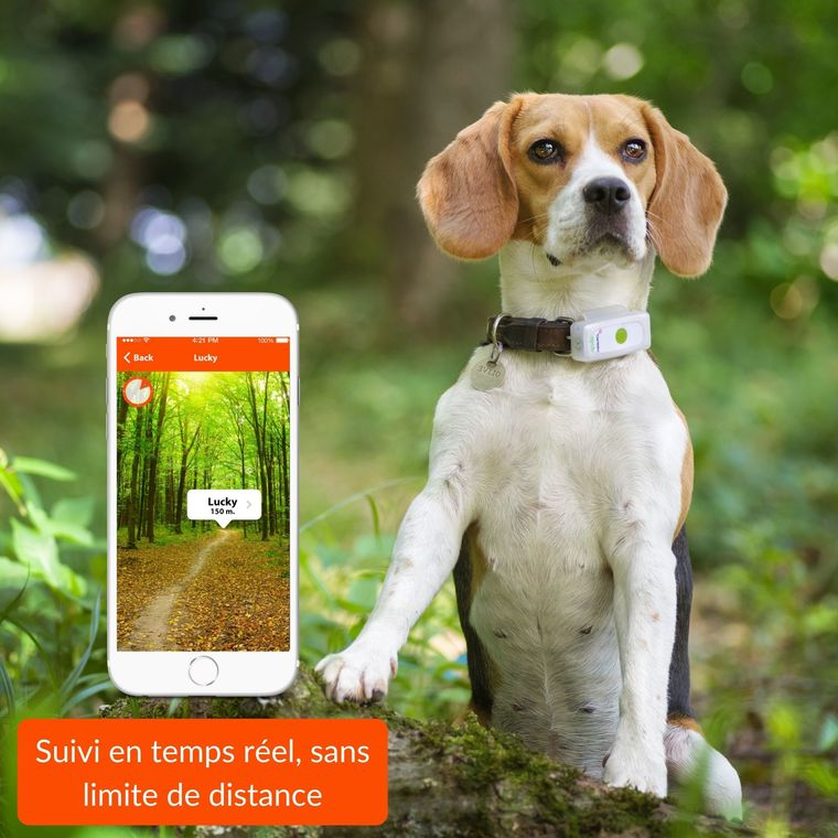 Weenect Dogs 2 – Traceur GPS pour chien 648690