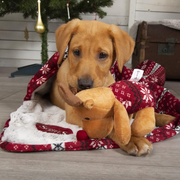 Plaid de Noël Gris avec Jouet 700823