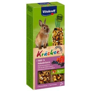 Kräcker fruits des bois lapin nain x2 Vitakraft 113g 819159