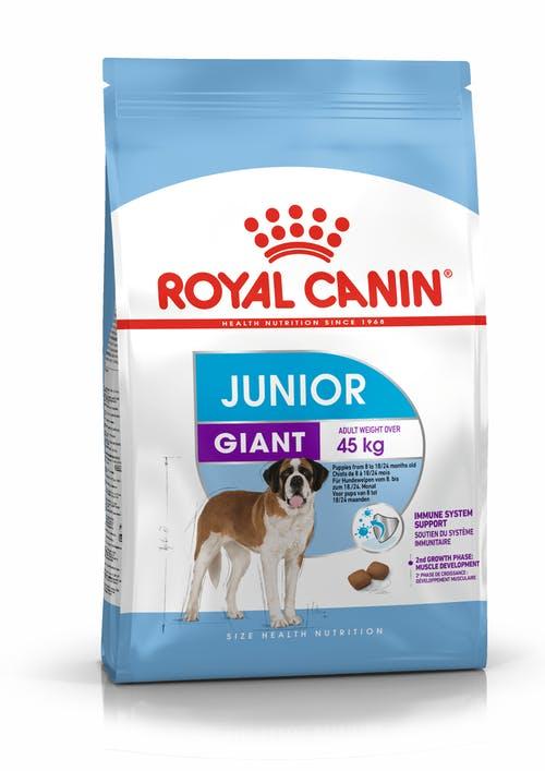 Croquette chien Royal Canin Giant junior 15kg 971614