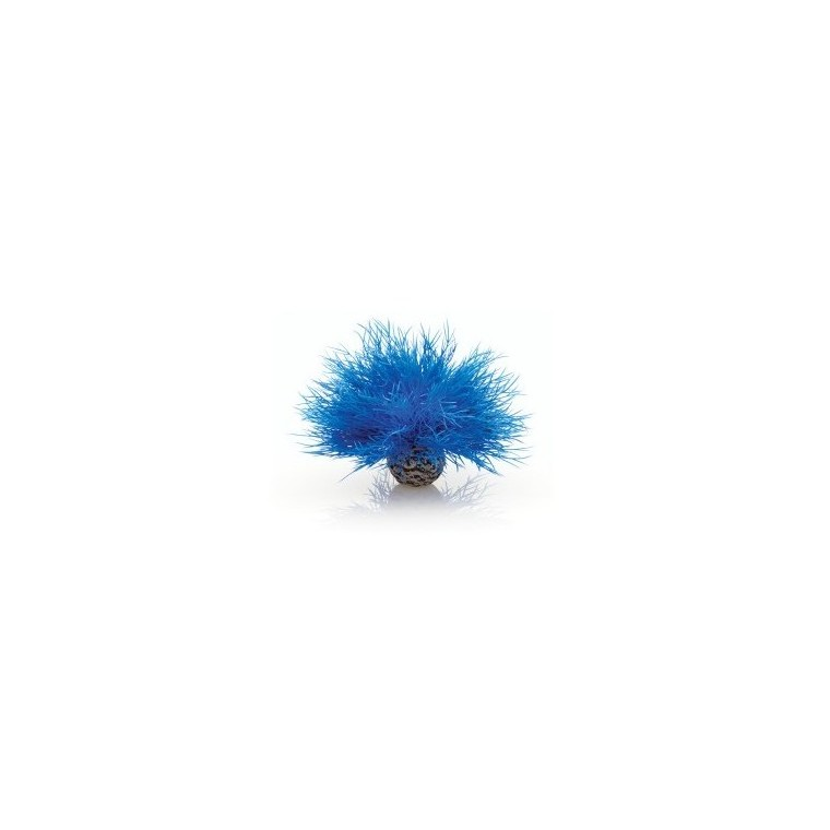 Décoration aquarium Blue Sea Lily biOrb 975395